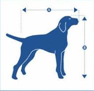 medidas mascota petlounge
